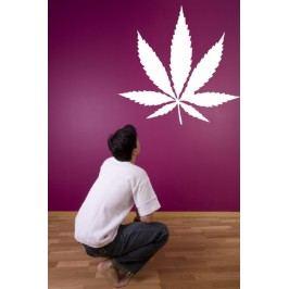 List marihuany (50 x 48 cm) -  Samolepka na stěnu