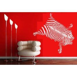 Zebří kůže (60 x 50 cm) -  Samolepka na zeď
