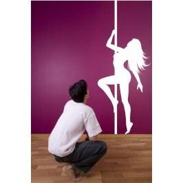 Tanečnice u tyče - Samolepka na zeď