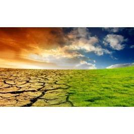 Globální oteplování 1 (60 x 36 cm) -  Plakát