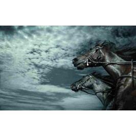 Běžící koně (60 x 37 cm) -  Plakát na stěnu