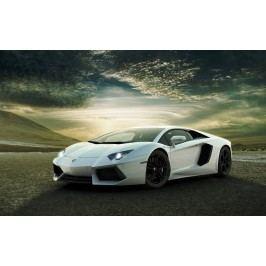 Lamborghini (60 x 38 cm) -  Plakát