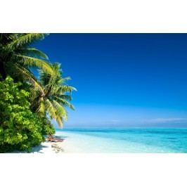 Palmy na pláži 2 (60 x 39 cm) -  Plakát na zeď