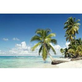 Palmy na pláži 3 (60 x 40 cm) -  Plakát na zeď