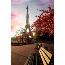 Podzimní Paříž (60 x 40 cm) -  Plakát na stěnu