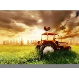 Traktor (60 x 44 cm) -  Plakát na zeď