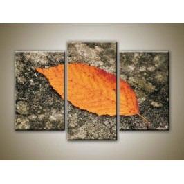 Podzimní list (75 x 50 cm) -  Třídílný obraz
