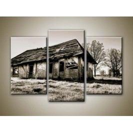 Rozbořená stodola (75 x 50 cm) -  Třídílný obraz