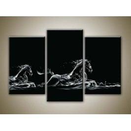 Vodní koně (75 x 50 cm) -  Třídílný obraz