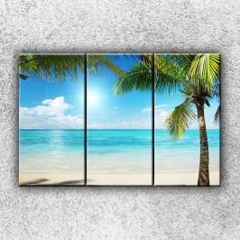 Palmy na pláži (90 x 60 cm) -  Třídílný obraz