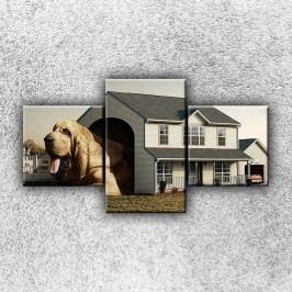 Pes v psí boudě 2 (90 x 50 cm) -  Třídílný obraz