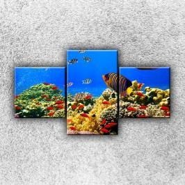 Ryby v moři 2 (90 x 50 cm) -  Třídílný obraz