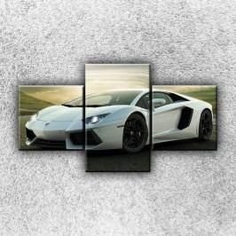 Stříbrné Lamborghini 3 (90 x 50 cm) -  Třídílný obraz