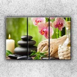 Orchideje a kameny 2 (120 x 80 cm) -  Třídílný obraz