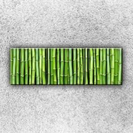 Bambus 2 (120 x 40 cm) -  Třídílný obraz