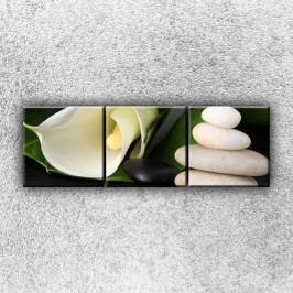 Bílé zátiší 3 (120 x 40 cm) -  Třídílný obraz