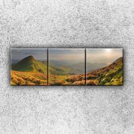 Vysokohorská louka 2 (120 x 40 cm) -  Třídílný obraz