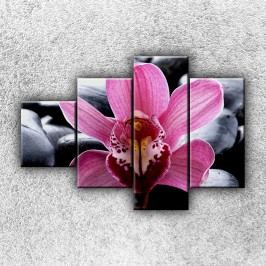 Fialková orchidej 3 (100 x 70 cm) -  Čtyřdílný obraz