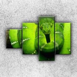 Zelený stočený had 4 (100 x 70 cm) -  Čtyřdílný obraz