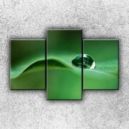 Kapička rosy 2 (105 x 70 cm) -  Třídílný obraz