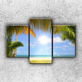 Slunce a palmy 3 (105 x 70 cm) -  Třídílný obraz