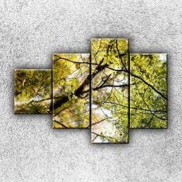 V koruně stromu 3 (100 x 70 cm) -  Čtyřdílný obraz