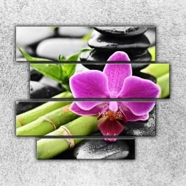 Květ a bambus (110 x 90 cm) -  Čtyřdílný obraz