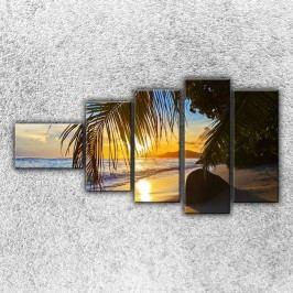 Palmová pláž 2 (110 x 60 cm) -  Pětidílný obraz