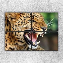 Řev geparda (140 x 100 cm) -  Čtyřdílný obraz