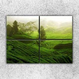 Zelená krajina (140 x 100 cm) -  Čtyřdílný obraz