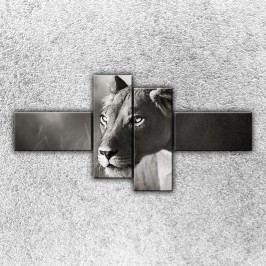 Lvice na lovu 2 (180 x 90 cm) -  Čtyřdílný obraz
