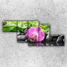 Růžová orchidej 3 (170 x 70 cm) -  Pětidílný obraz