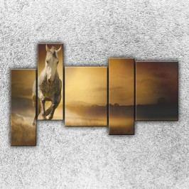 Běžící kůň 3 (190 x 120 cm) -  Pětidílný obraz