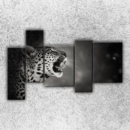 Řev geparda 3 (190 x 120 cm) -  Pětidílný obraz