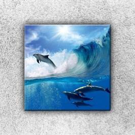 Delfíni ve vlně (30 x 30 cm) -  Jednodílný obraz
