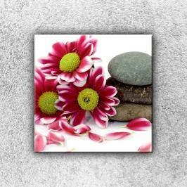 Květiny s kamením 1 (30 x 30 cm) -  Jednodílný obraz