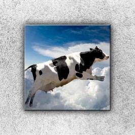 Létající kráva (30 x 30 cm) -  Jednodílný obraz
