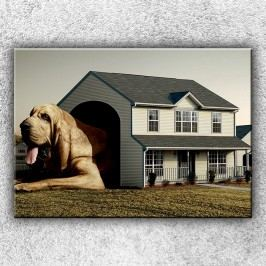 Pes v psí boudě 1 (70 x 50 cm) -  Jednodílný obraz