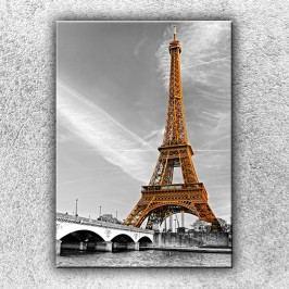 Zlatá Eiffelovka (70 x 50 cm) -  Jednodílný obraz