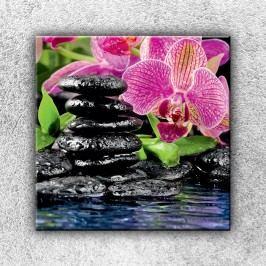 Kameny s květinou 1 (70 x 70 cm) -  Jednodílný obraz