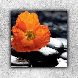 Oranžový květ na oblázku (70 x 70 cm) -  Jednodílný obraz