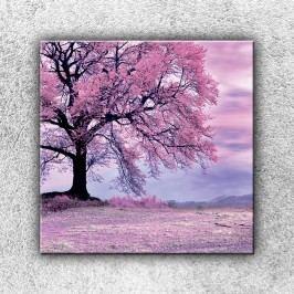 Růžový strom 3 (70 x 70 cm) -  Jednodílný obraz