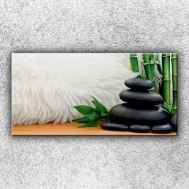 Kameny s kožešinou (100 x 50 cm) -  Jednodílný obraz