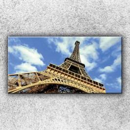Pata eifelovky 2 (100 x 50 cm) -  Jednodílný obraz