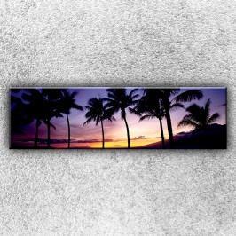 Palmy při západu slunce (140 x 40 cm) -  Jednodílný obraz