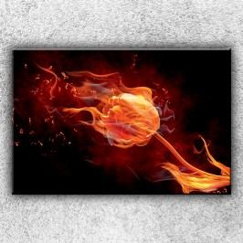 Plamenná růže 2 (120 x 80 cm) -  Jednodílný obraz
