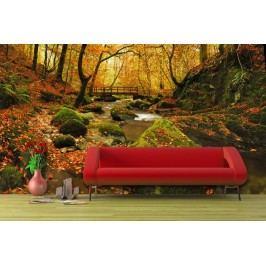 Podzimní park (126 x 81 cm) -  Fototapeta na zeď
