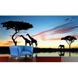 Afrika (126 x 84 cm) -  Fototapeta