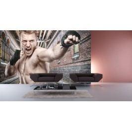 Boxer (126 x 84 cm) -  Fototapeta na zeď