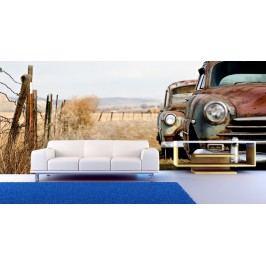 Zrezlý automobil (126 x 84 cm) -  Fototapeta na stěnu